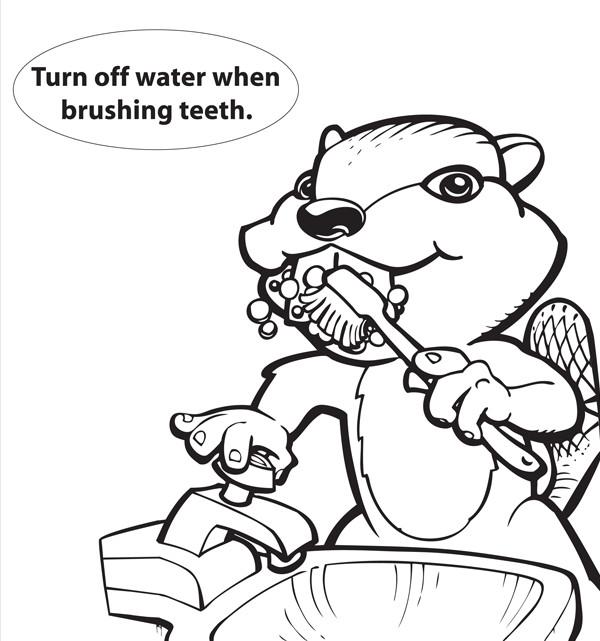 beaver colorsheet