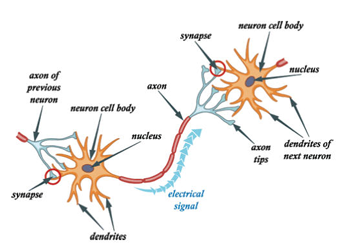 nervous energy 1