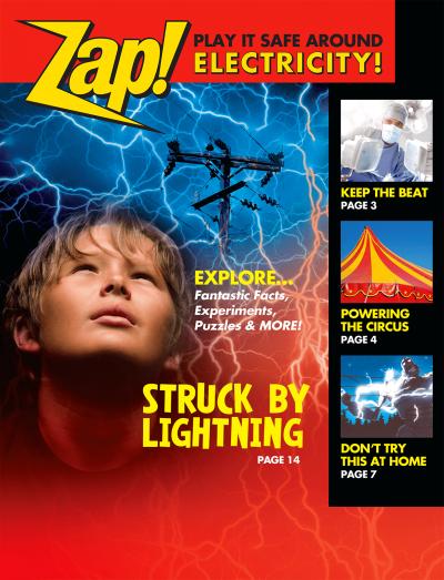 35810 Zap Play It Safe Around Electricity lg