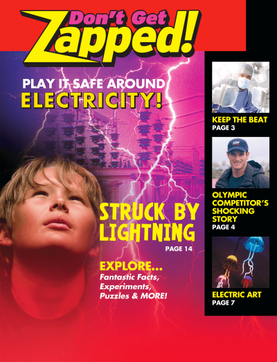 35814 Dont Get Zapped Play It Safe Around Electricity lg